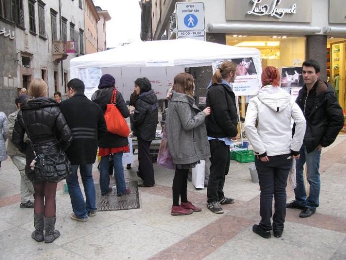 TRENTO - 12.03.2011 - TAVOLO INFORMATIVO SULLA VIVISEZIONE 176