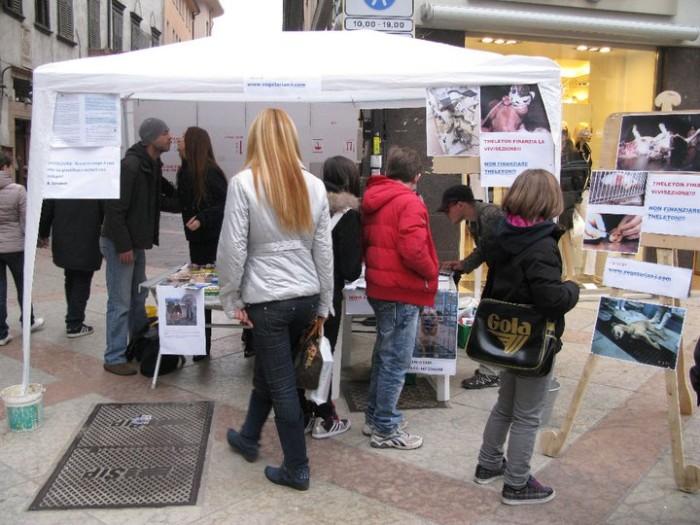 TRENTO - 12.03.2011 - TAVOLO INFORMATIVO SULLA VIVISEZIONE 179
