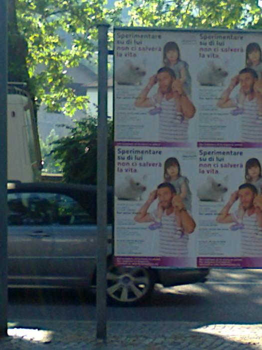 25.05.2012 - CENA VEGAN E CAMPAGNA CONTRO LA VIVISEZIONE 80