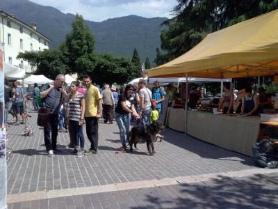 01.06.2014 TAVOLO INFORMATIVO - ARCO TN ALLA FESTA VEG DEGLI ANIMALI 30