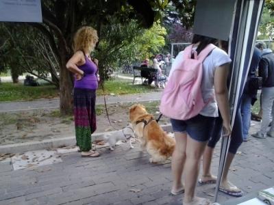 01.06.2014 TAVOLO INFORMATIVO - ARCO TN ALLA FESTA VEG DEGLI ANIMALI 41
