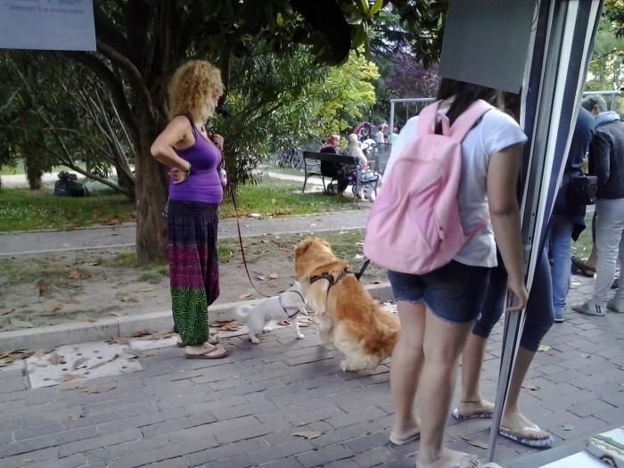 01.06.2014 TAVOLO INFORMATIVO - ARCO TN ALLA FESTA VEG DEGLI ANIMALI 92