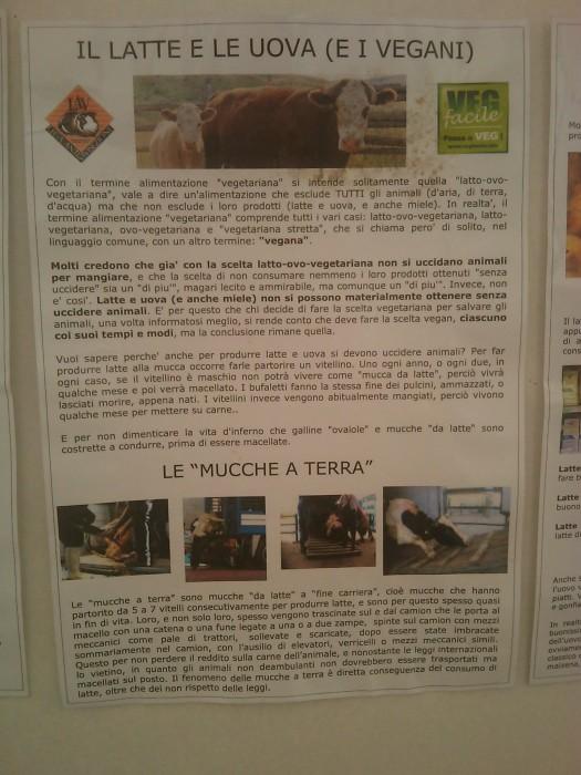 BIO VEGAN FEST 2011 - BASSANO DEL GRAPPA 383