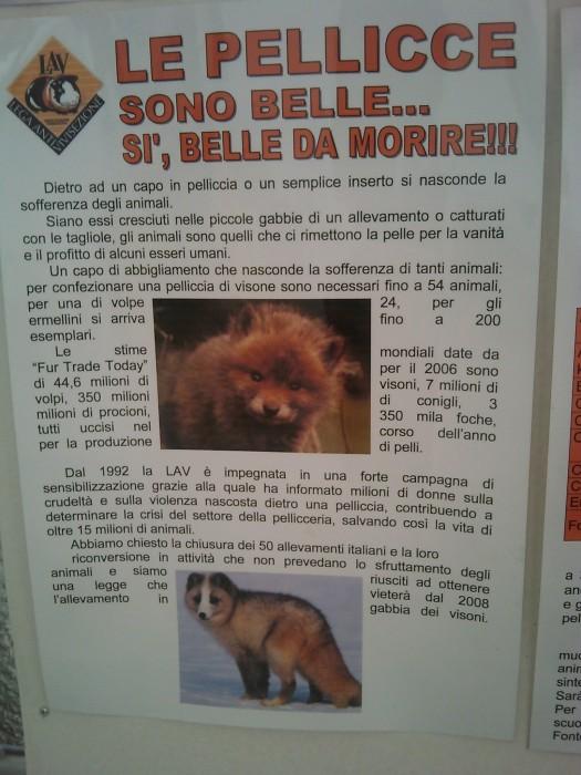BIO VEGAN FEST 2011 - BASSANO DEL GRAPPA 399