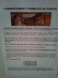 BIO VEGAN FEST 2011 - BASSANO DEL GRAPPA 179