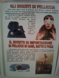 BIO VEGAN FEST 2011 - BASSANO DEL GRAPPA 180