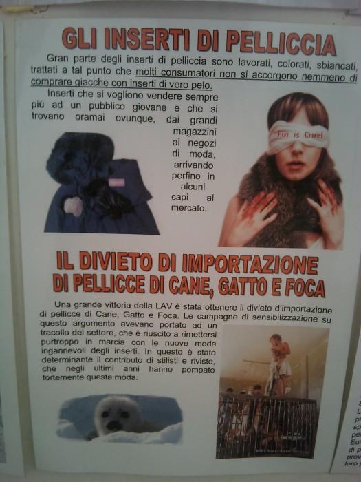 BIO VEGAN FEST 2011 - BASSANO DEL GRAPPA 410