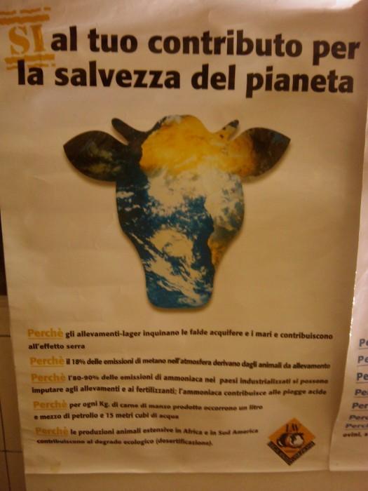 BIO VEGAN FEST 2011 - BASSANO DEL GRAPPA 434