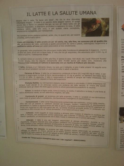 BIO VEGAN FEST 2011 - BASSANO DEL GRAPPA 451