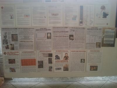 BIO VEGAN FEST 2011 - BASSANO DEL GRAPPA 3