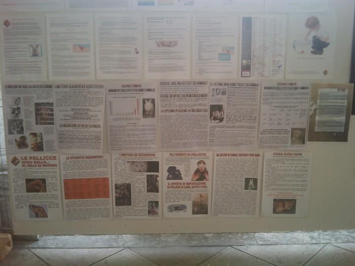 BIO VEGAN FEST 2011 - BASSANO DEL GRAPPA 233