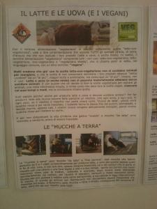 BIO VEGAN FEST 2011 - BASSANO DEL GRAPPA 5