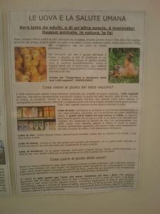 BIO VEGAN FEST 2011 - BASSANO DEL GRAPPA 15