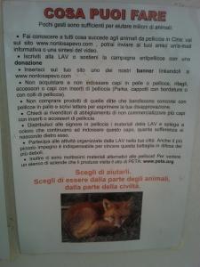 BIO VEGAN FEST 2011 - BASSANO DEL GRAPPA 24