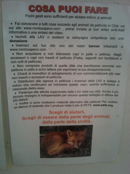 BIO VEGAN FEST 2011 - BASSANO DEL GRAPPA 254
