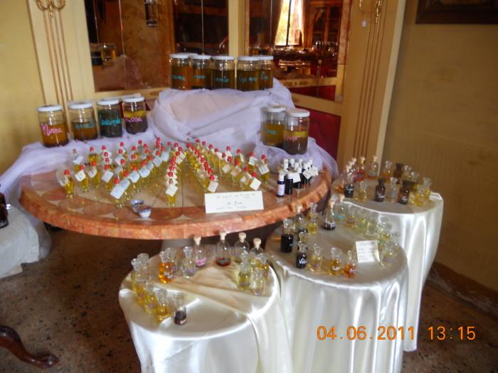 BIO VEGAN FEST 2011 - BASSANO DEL GRAPPA 353