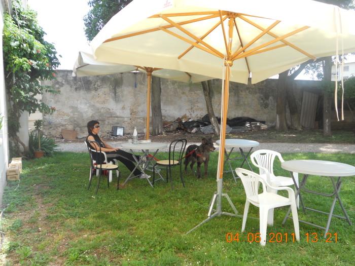 BIO VEGAN FEST 2011 - BASSANO DEL GRAPPA 380
