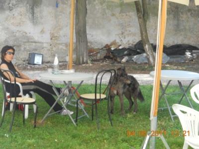 BIO VEGAN FEST 2011 - BASSANO DEL GRAPPA 152