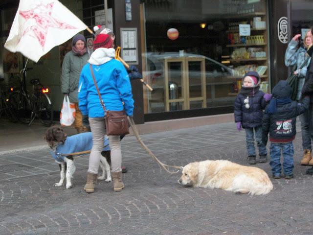 Bolzano 04.02.2012 manifestazione contro lo sfruttamento degli animali 322