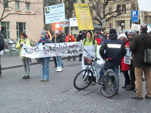 Bolzano 04.02.2012 manifestazione contro lo sfruttamento degli animali 324