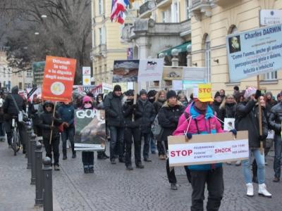 Bolzano 04.02.2012 manifestazione contro lo sfruttamento degli animali 112