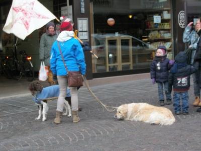 Bolzano 04.02.2012 manifestazione contro lo sfruttamento degli animali 126