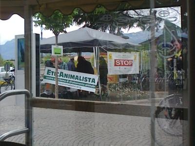 14.04.2012 - BOLZANO - TAVOLO INFORMATIVO CONTRO LA CACCIA E SULL'ALIMENTAZIONE VEGANA 4