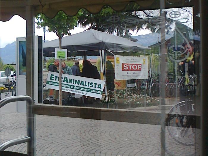 14.04.2012 - BOLZANO - TAVOLO INFORMATIVO CONTRO LA CACCIA E SULL'ALIMENTAZIONE VEGANA 118