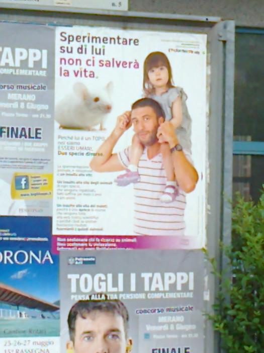 25.05.2012 - CENA VEGAN E CAMPAGNA CONTRO LA VIVISEZIONE 50