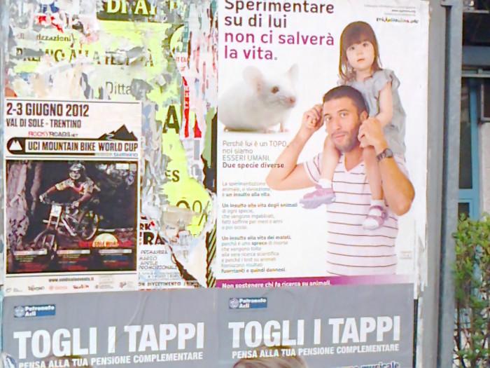 25.05.2012 - CENA VEGAN E CAMPAGNA CONTRO LA VIVISEZIONE 52