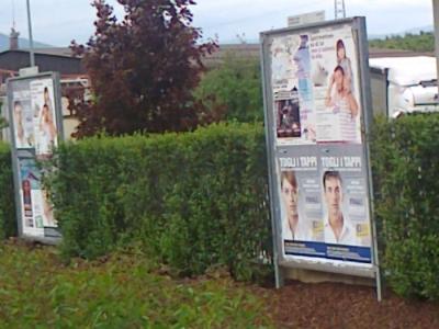 25.05.2012 - CENA VEGAN E CAMPAGNA CONTRO LA VIVISEZIONE 7