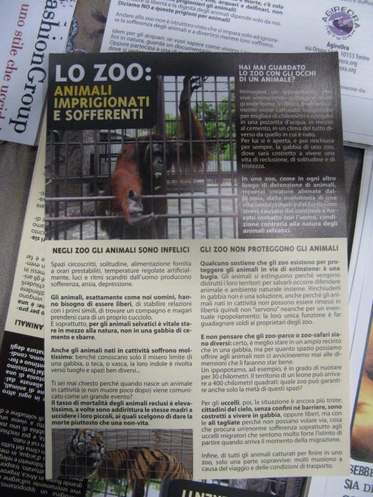 MOSTRA SUI MACELLI - FA LA COSA GIUSTA OTTOBRE 2012 465