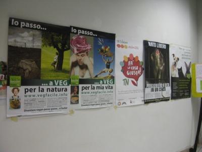 MOSTRA SUI MACELLI - FA LA COSA GIUSTA OTTOBRE 2012 219