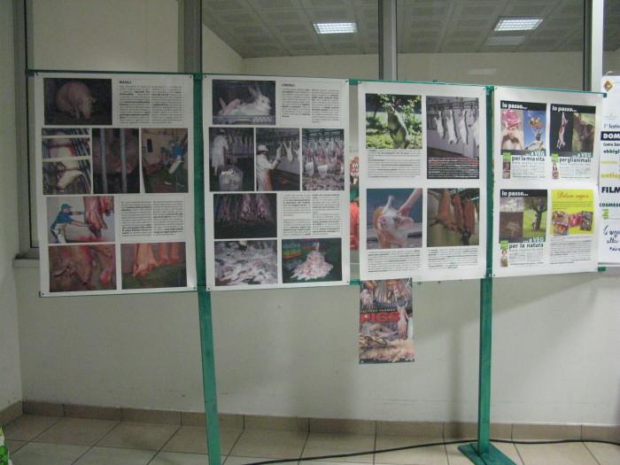 MOSTRA SUI MACELLI - FA LA COSA GIUSTA OTTOBRE 2012 490