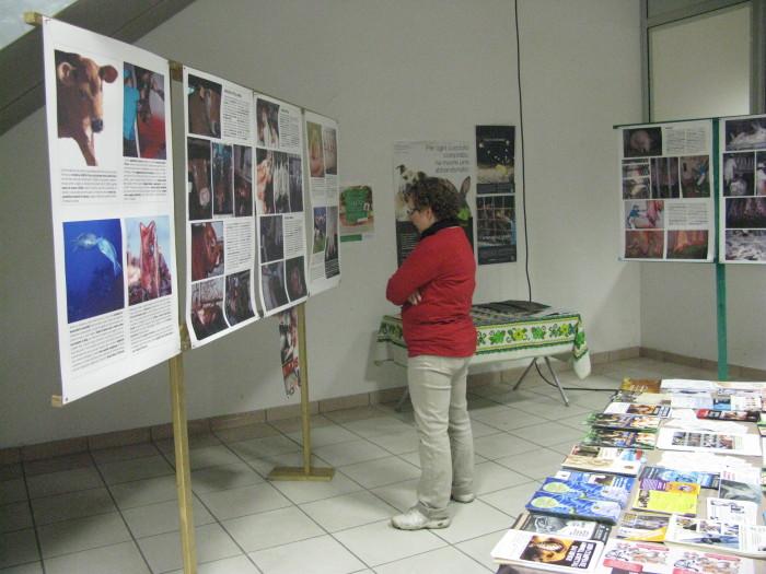 MOSTRA SUI MACELLI - FA LA COSA GIUSTA OTTOBRE 2012 305