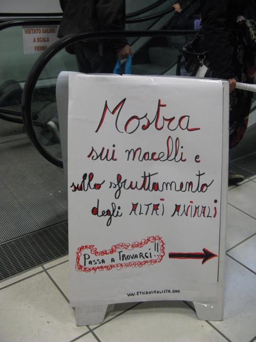 MOSTRA SUI MACELLI - FA LA COSA GIUSTA OTTOBRE 2012 319