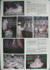 MOSTRA SUI MACELLI - FA LA COSA GIUSTA OTTOBRE 2012 87