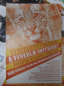 MOSTRA SUI MACELLI - FA LA COSA GIUSTA OTTOBRE 2012 96