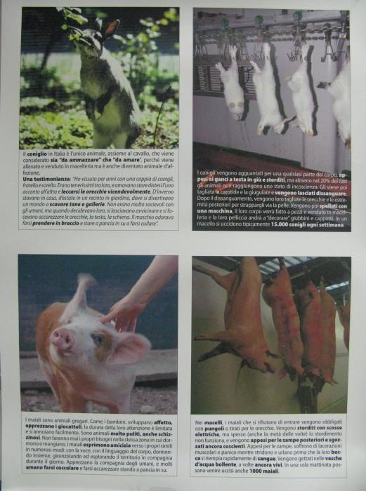 MOSTRA SUI MACELLI - FA LA COSA GIUSTA OTTOBRE 2012 404