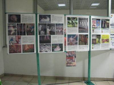 MOSTRA SUI MACELLI - FA LA COSA GIUSTA OTTOBRE 2012 177