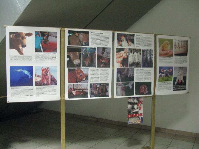 MOSTRA SUI MACELLI - FA LA COSA GIUSTA OTTOBRE 2012 429