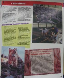MOSTRA SUI MACELLI - FA LA COSA GIUSTA OTTOBRE 2012 181