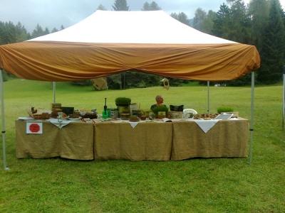 29.07.2012 - FESTA DELLE ASSOCIAZIONI - 7 LARICI - COREDO TN 34