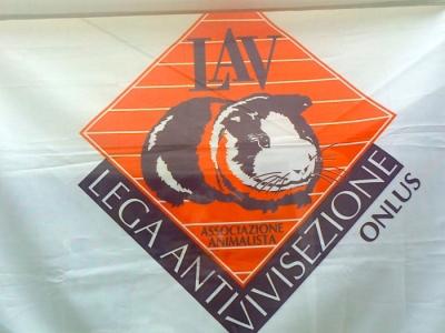 29.07.2012 - FESTA DELLE ASSOCIAZIONI - 7 LARICI - COREDO TN 40
