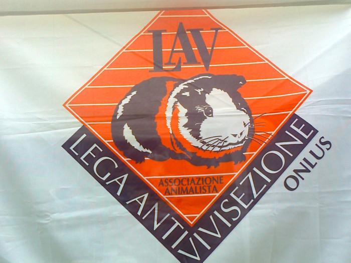29.07.2012 - FESTA DELLE ASSOCIAZIONI - 7 LARICI - COREDO TN 110