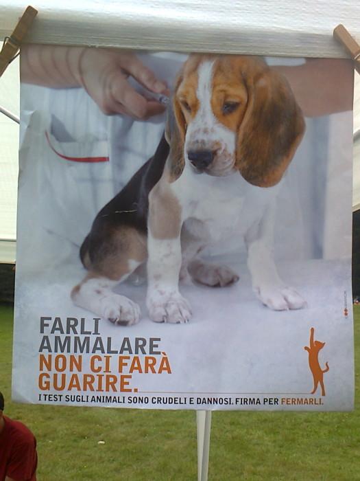 29.07.2012 - FESTA DELLE ASSOCIAZIONI - 7 LARICI - COREDO TN 128
