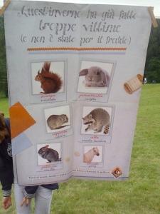29.07.2012 - FESTA DELLE ASSOCIAZIONI - 7 LARICI - COREDO TN 10