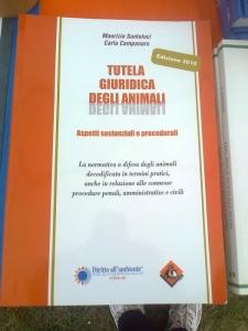 29.07.2012 - FESTA DELLE ASSOCIAZIONI - 7 LARICI - COREDO TN 20
