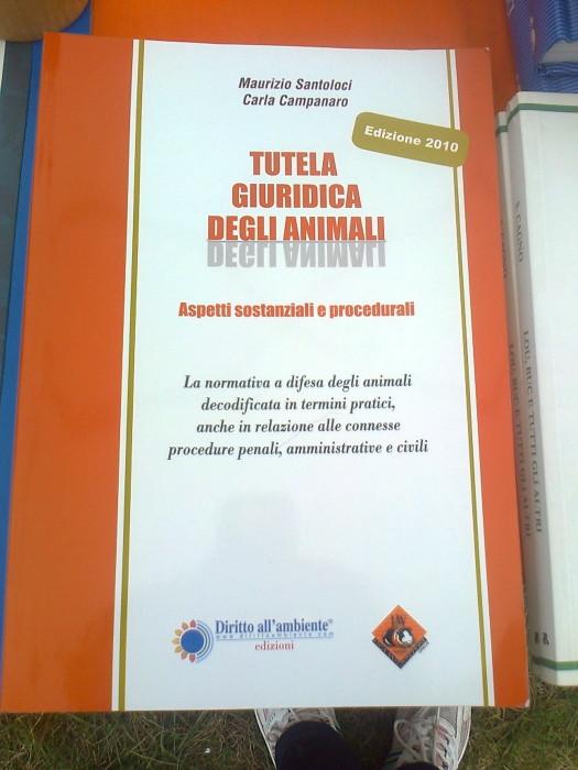 29.07.2012 - FESTA DELLE ASSOCIAZIONI - 7 LARICI - COREDO TN 90