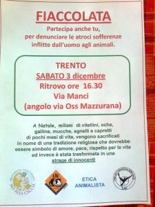 03 dicembre 2011 Trento fiaccolata per denunciare lo sterminio degli animali nel periodo natalizio (e non solo!) 48